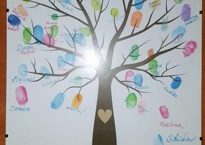 drzewoaa